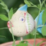 Der Trockenfisch.....