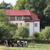 Die Villa Weissig hat zweimal im Jahr Vierbeiner vor der Tür.....