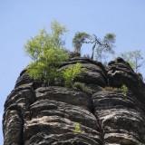 Typische Sandsteine mit ein wenig Bewuchs.....