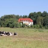 Und noch einmal die Villa Weissig.....