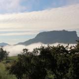 Tagesbeginn mit ein wenig Nebel im Elbtal....